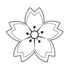 Drawn sakura blossom doodle Info/Xochiquetzal/plant/ cherry Image step TattooTattoo