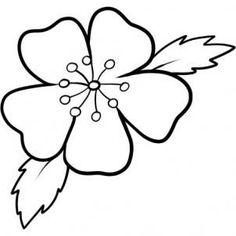 Drawn sakura blossom doodle Blossom 7 to to cherry