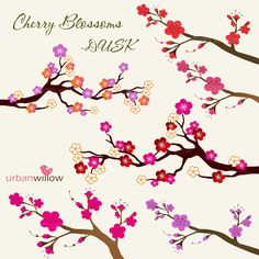 Drawn sakura blossom doodle Png 99 DOWNLOAD  Jpeg