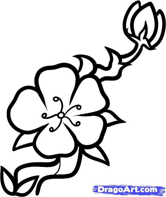 Drawn sakura blossom easy Kids Cherry images cherry best