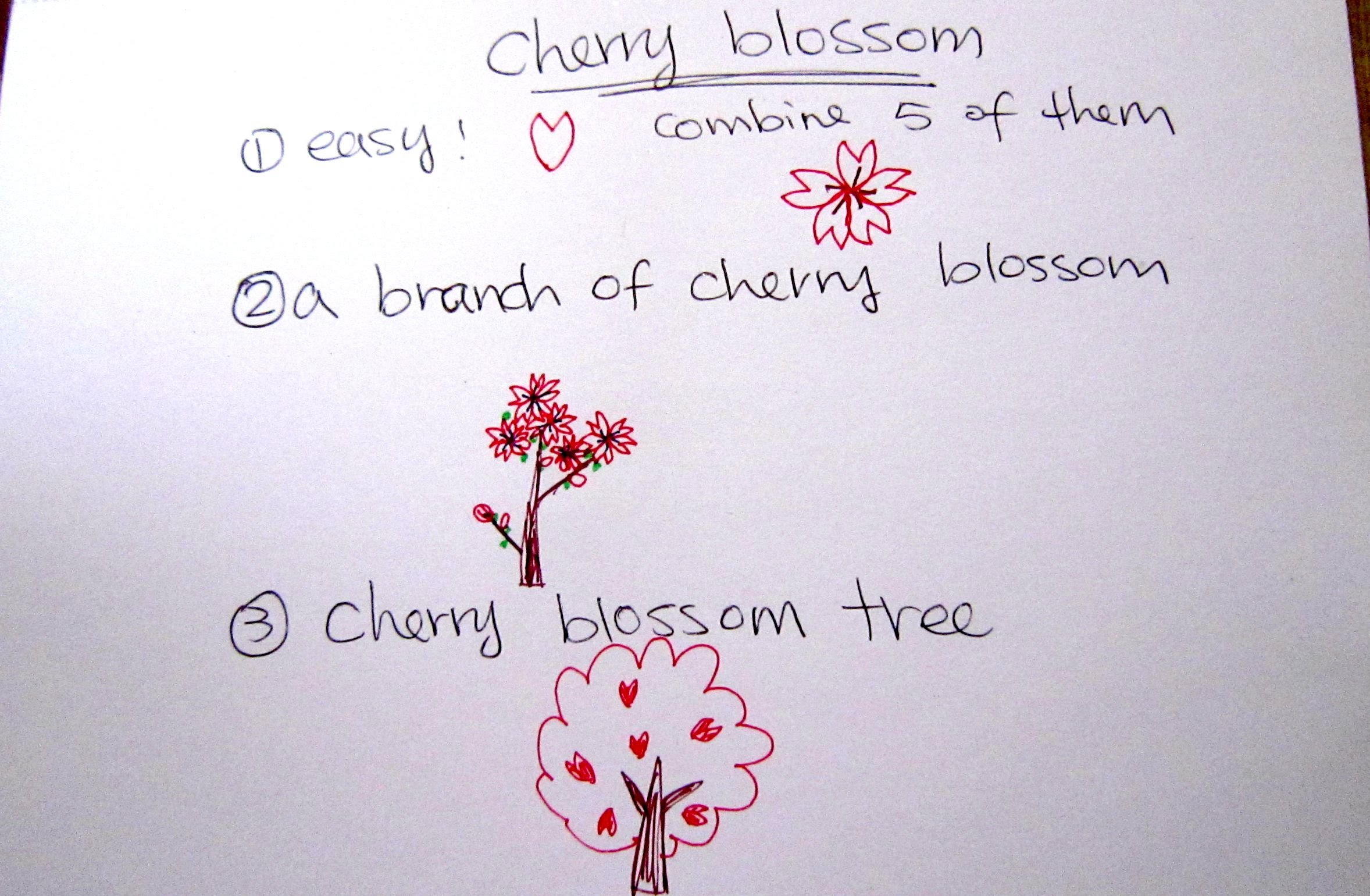 Drawn sakura blossom easy Tutorial to How Blossom Beginners