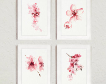 Drawn sakura blossom flower cluster Cherry View ColorWatercolor on of