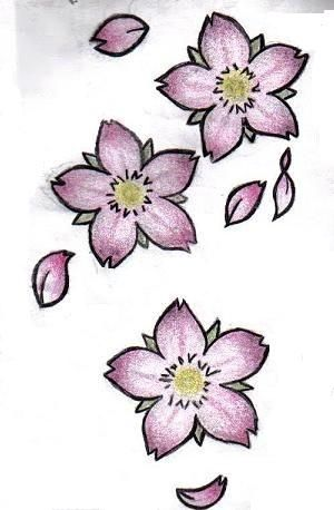 Drawn sakura blossom flower cluster My inkd by Pinterest blossoms