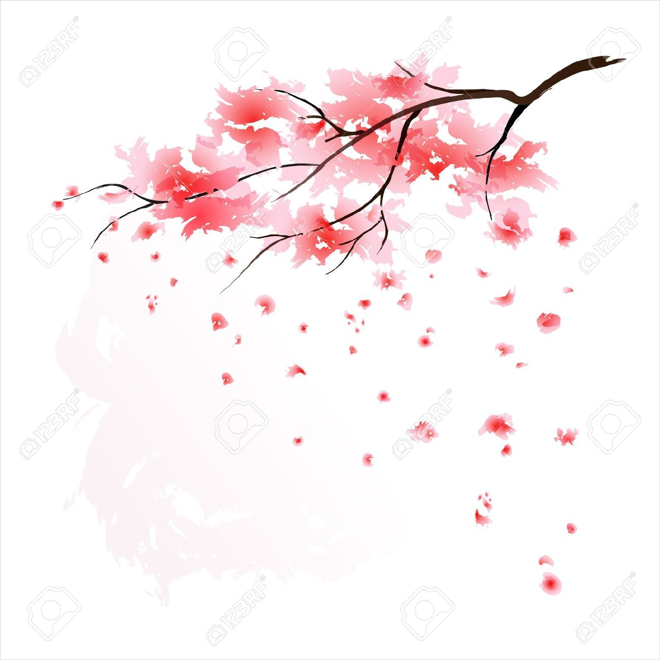 Drawn sakura blossom flower petal  Blossom artwork branch more!