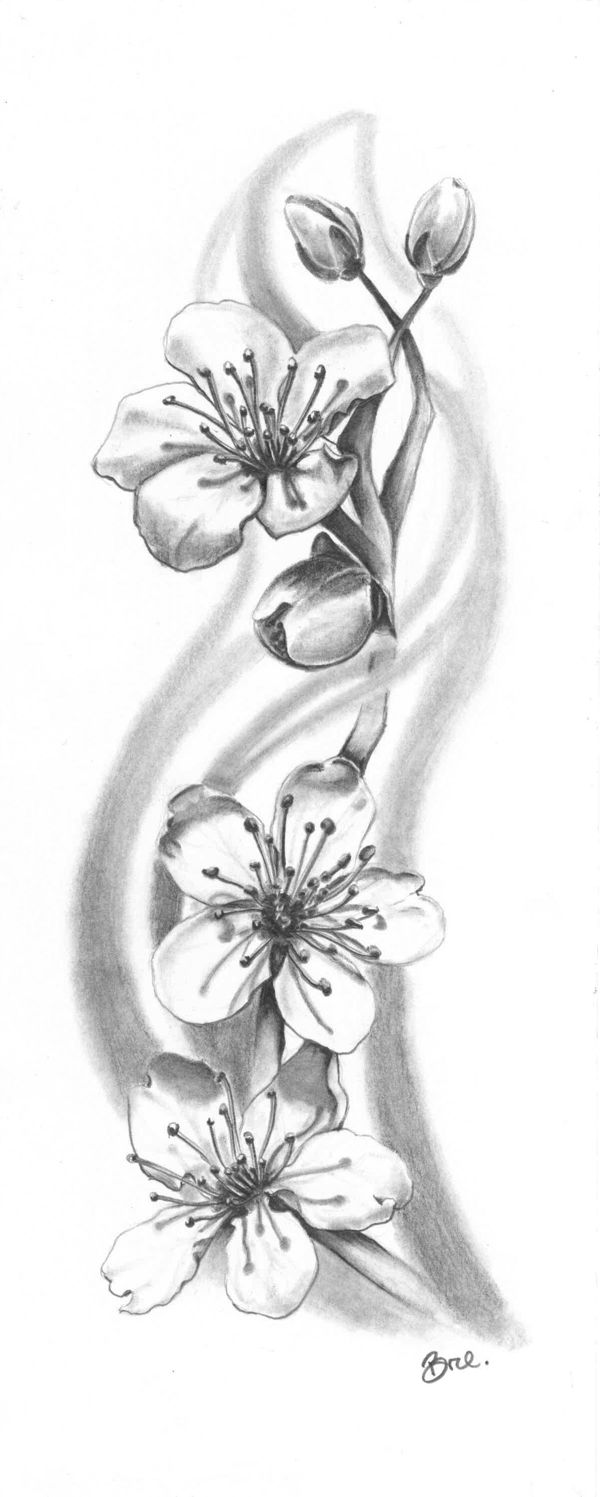 Drawn sakura blossom flower petal Ideas tattoo Más zoeken grey