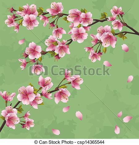 Drawn sakura blossom graphic Vintage background Japanese sakura tree