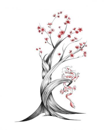 Drawn sakura blossom japanese plant Top Picture 5 Designs Blossom