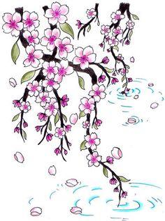 Drawn sakura blossom japanese writing Blossoms cerezos de cherry