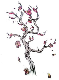 Drawn sakura blossom japanese writing Tree & Japanese cherry Cherry