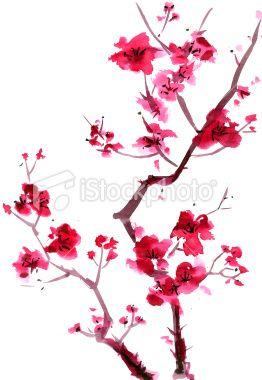 Drawn sakura blossom japenese Painting Google Google painting Search