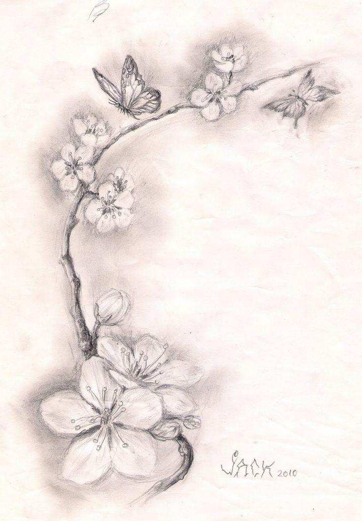 Drawn sakura blossom letter art Best Pinterest Cherry 10+ Blossom