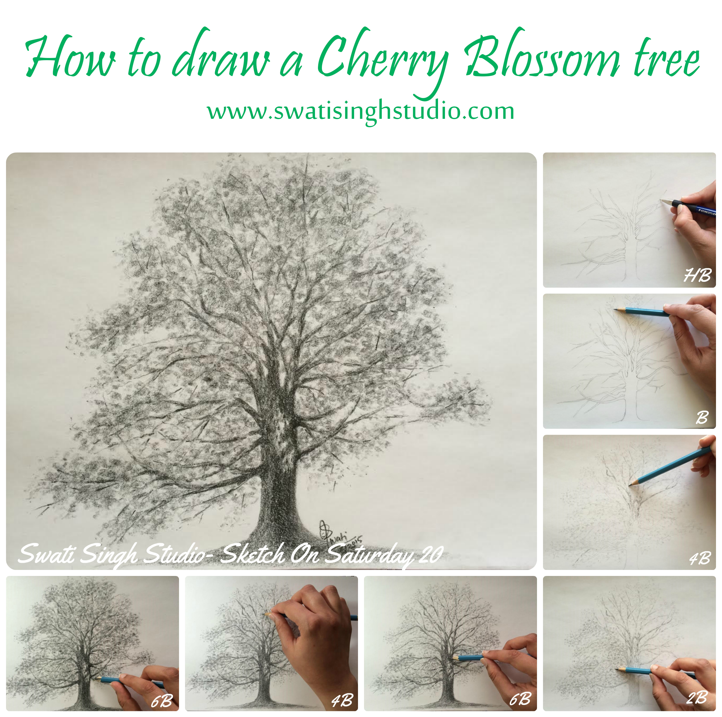Drawn sakura blossom line drawing Blog Singh draw Cherry Art