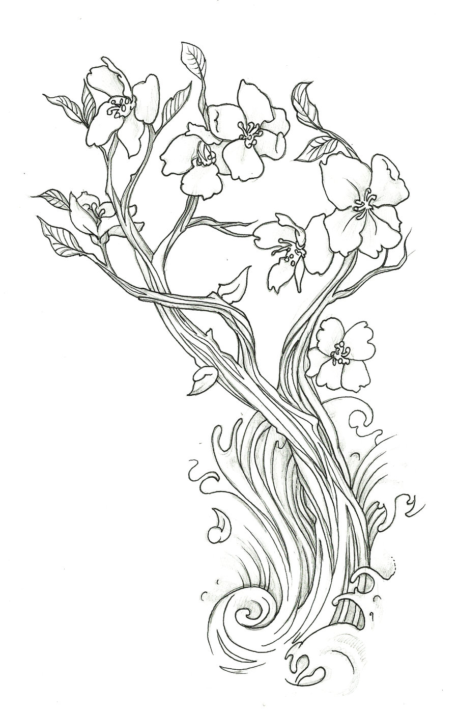 Drawn sakura blossom line drawing By Cherry drawings endofnonentity and