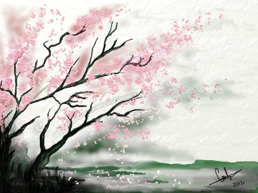 Drawn sakura blossom nice tree Art to how cherry søk