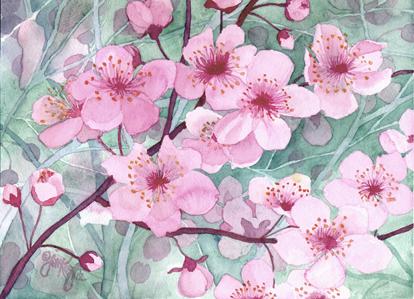 """Drawn sakura blossom one stroke X 11 Blossoms"""" 1/2″ Board"""