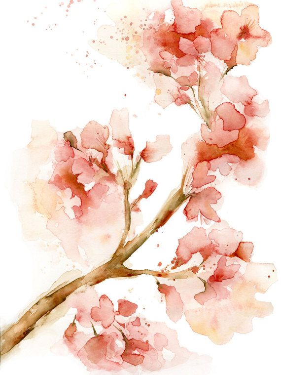 Drawn sakura blossom orange blossom flower Coral Pete Katrina of Best