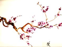Drawn sakura blossom orchid tree In used flower is usher