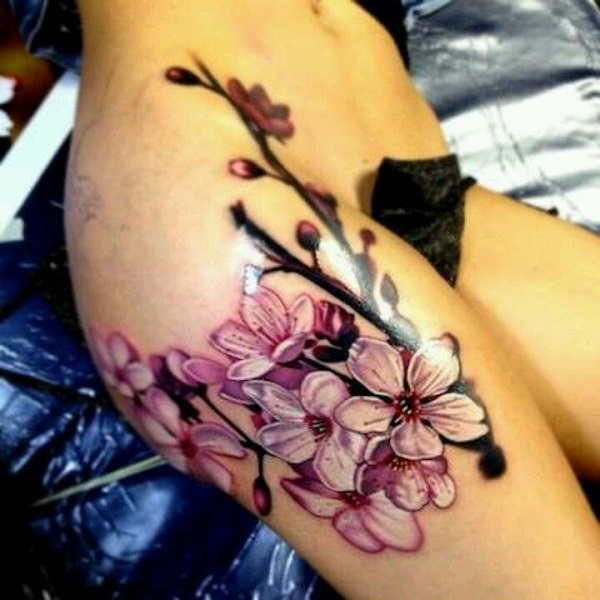 Drawn sakura blossom oriental On cherry inked blossom and