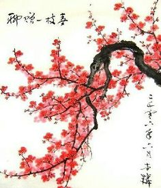 Drawn sakura blossom oriental  Japanese Shikishi on Cherry