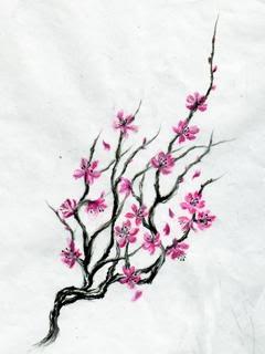 Drawn sakura blossom oriental Cherry Find 84 on this