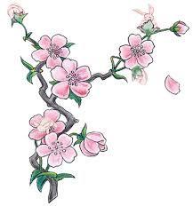 Drawn sakura blossom oriental  cherry Garden Set blossom