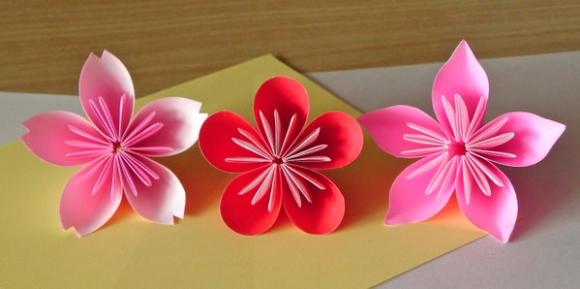 Drawn sakura blossom peach blossom Plum a  blossom cherry