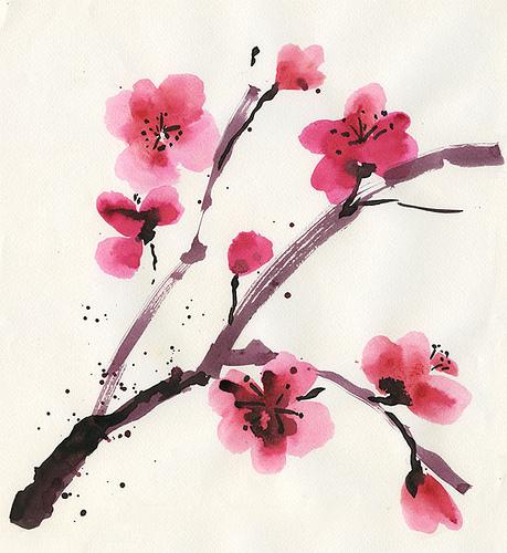 Drawn sakura blossom peach blossom Ukraine Cherry Peach Светлана Blossom