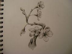 Drawn sakura blossom pen Pinterest Pin · Pencil cherry