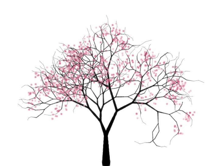 Drawn sakura blossom pen About a cherry tree Cherry
