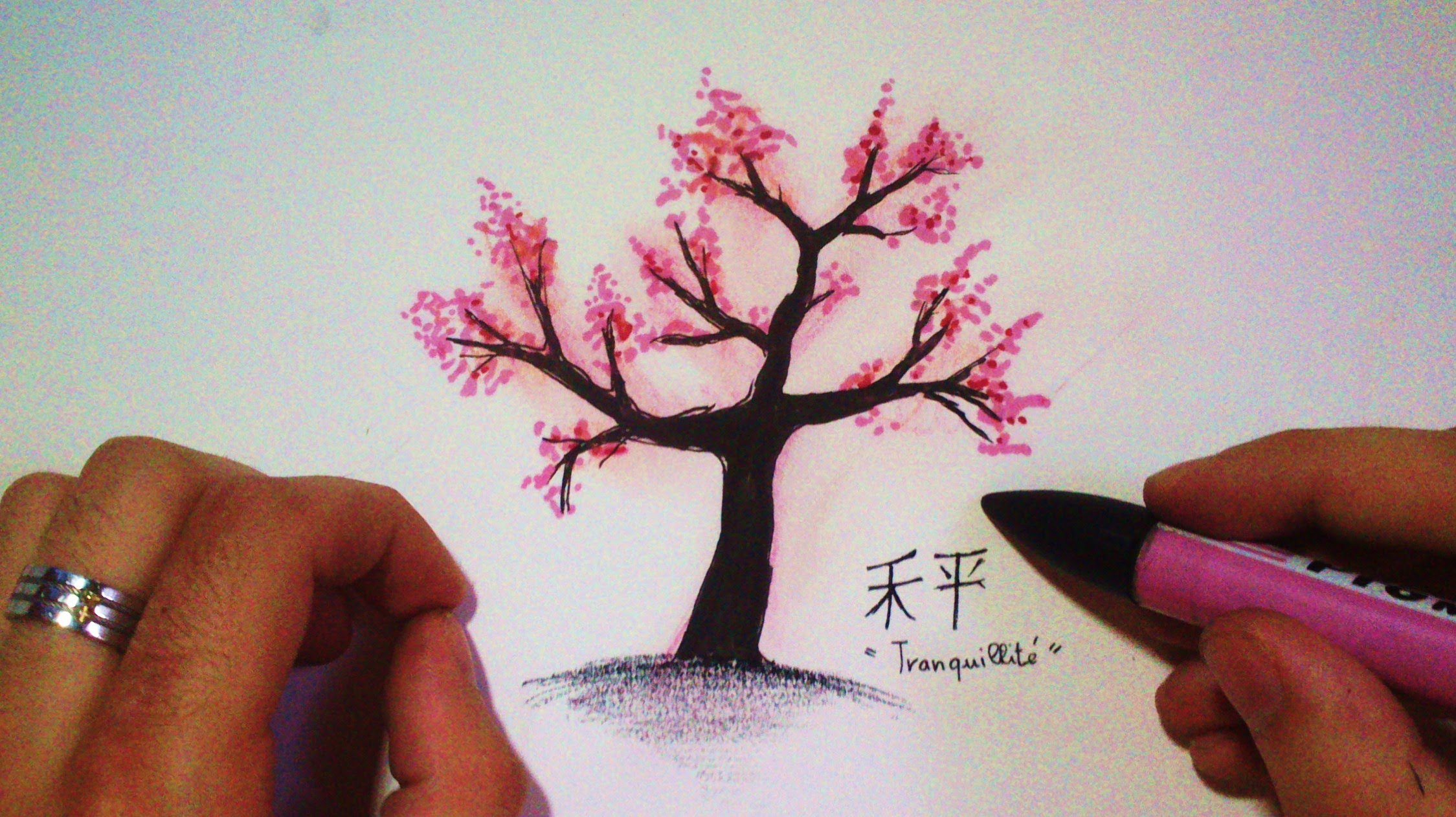 Drawn sakura blossom pencil step by step YouTube tree Japanese to How
