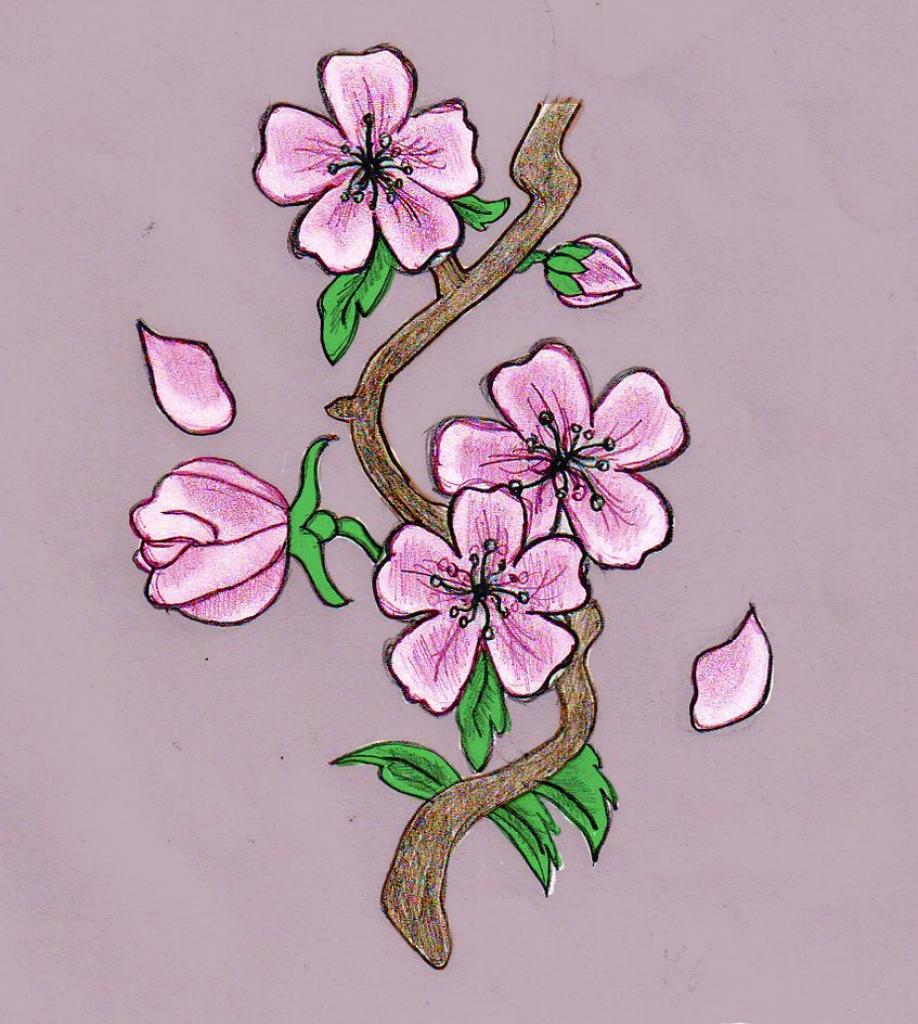 Drawn sakura blossom pinter Of Drawing Drawing Cakes For