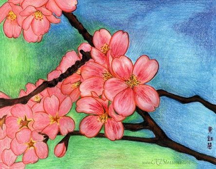 Drawn sakura blossom pinter Blossom Cherry Think Paintings Pinterest