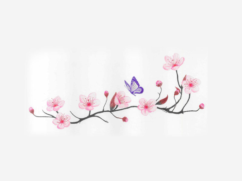 Drawn sakura blossom pinter I cherry_blossom_and_spring_time_with_flying_butterfly_tattoo_idea Cherry I cherry_blossom_and_spring_time_with_flying_butterfly_tattoo_idea