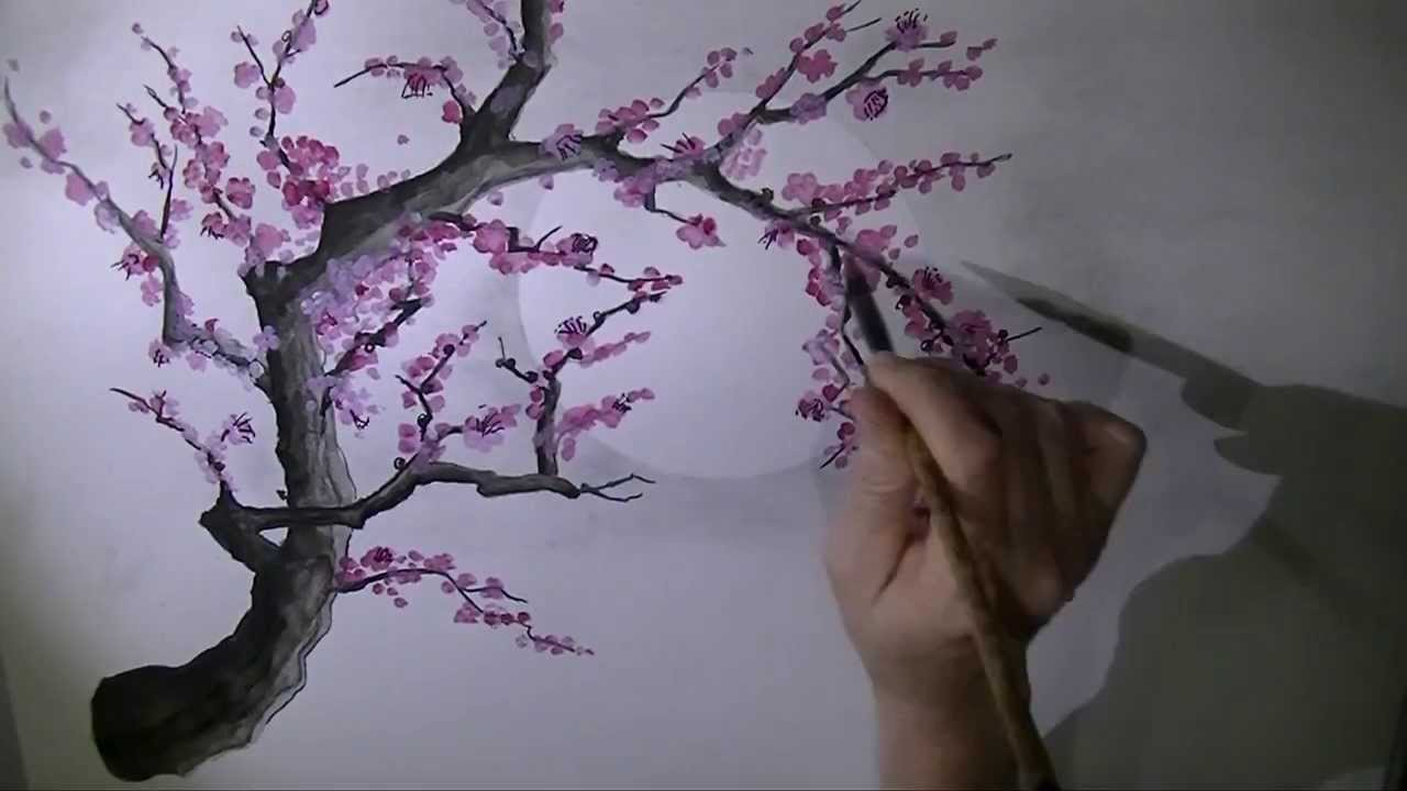 Drawn sakura blossom plum blossom YouTube painting  plum blossom