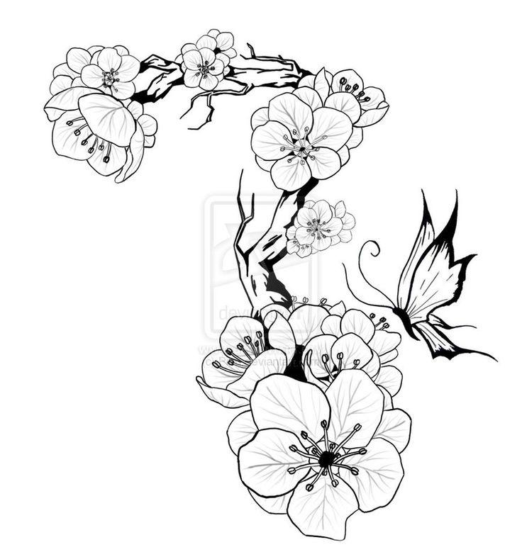 Drawn sakura blossom plum blossom Best on deviantART CNY ~Pibu