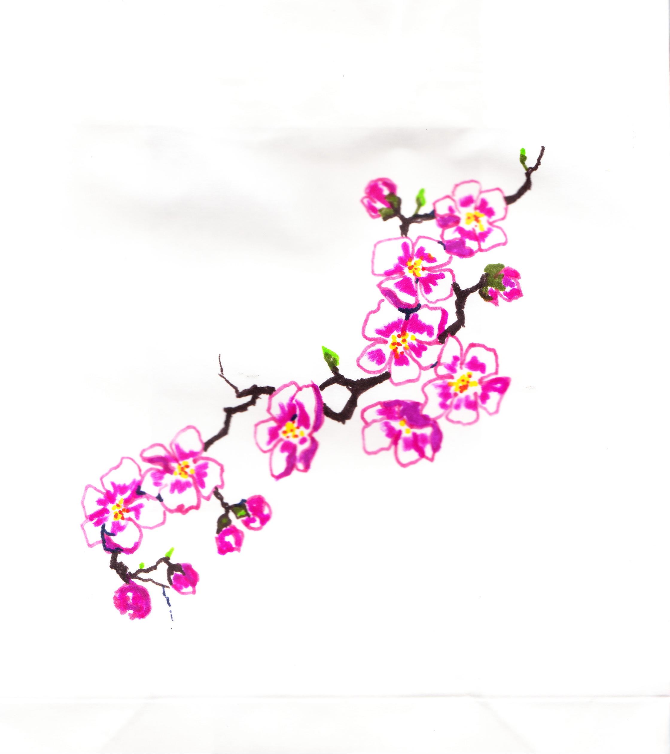 Drawn sakura blossom plum blossom Blossom Bag 1 Linda Gift