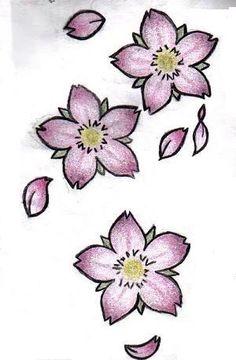 Drawn sakura blossom plum blossom Stock cherry Cherry Blossom blossom