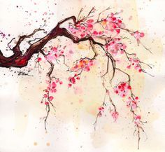 Drawn sakura blossom rose tree De tattoo cerezo Cherry hojas