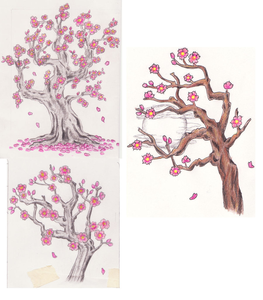 Drawn tree cherry blossom tree A (alcohol markers) markers) to