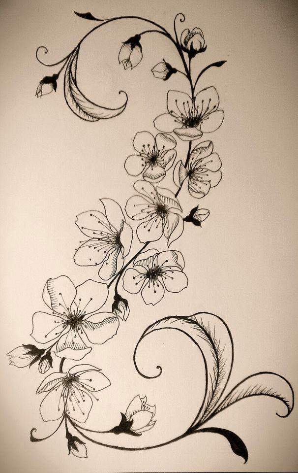 Drawn sakura blossom side view Cherry on · yahoo tattoos