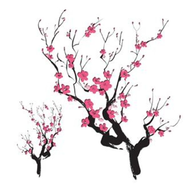 Drawn cherry Japanese Cherry DrawingJapanese Blossoms red