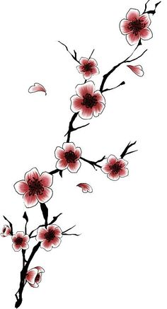 Drawn sakura blossom simple Craft  japanese blossom and