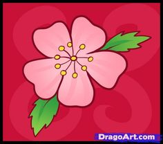 Drawn sakura blossom simple A cherry how draw