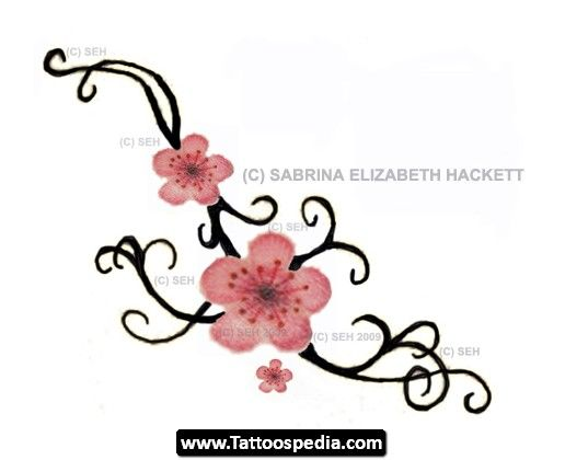 Drawn sakura blossom single On Blossom 01 images 73