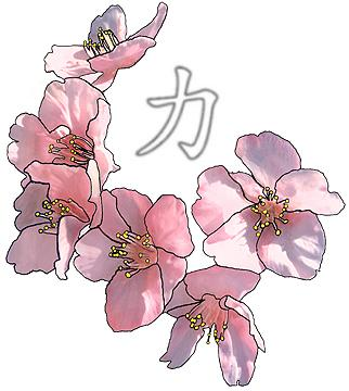 Drawn sakura blossom single Tattoo Cherry images Single and