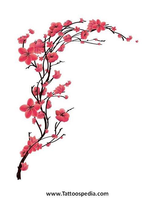 Drawn sakura blossom single Ideas Breast Blossom 20+ (508×650)