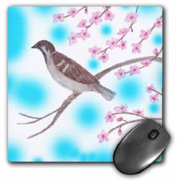 Drawn sakura blossom sparrows  background Cherry Bird Colorful