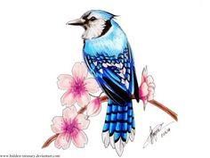 Drawn sakura blossom sparrows Blossom sakura Cherry Bird sparrow