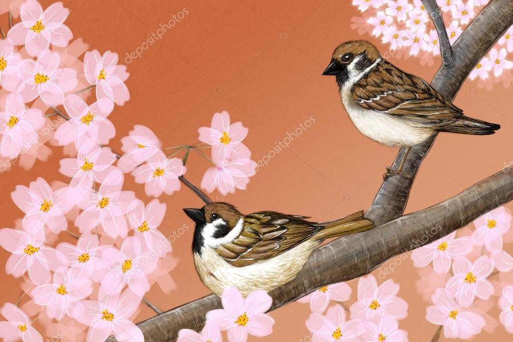 Drawn sakura blossom cerry — Hand Stock Hand flowers