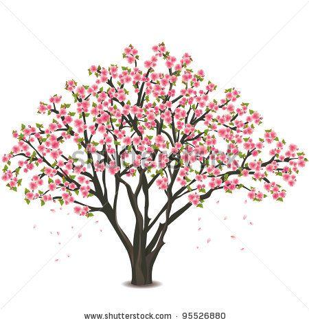 Drawn sakura blossom spring tree Sakura tree isolated white blossom